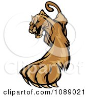 Clipart Clawing Cougar Mascot Royalty Free Vector Illustration