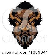 Tough Buffalo Mascot Head