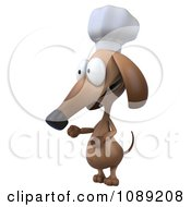 Clipart 3d Chef Dachshund Dog Presenting 2 Royalty Free CGI Illustration