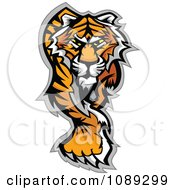 Clipart Walking Tiger Mascot Royalty Free Vector Illustration