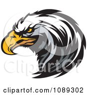 Clipart Bald Eagle Mascot Head Focused Royalty Free Vector Illustration by Chromaco