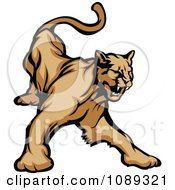 Clipart Aggressive Cougar Mascot Hissing Royalty Free Vector Illustration