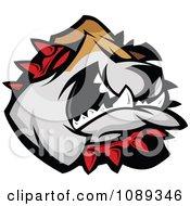 Bulldog Mascot Face Attacking