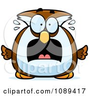 Clipart Chubby Scared Owl Royalty Free Vector Illustration by Cory Thoman
