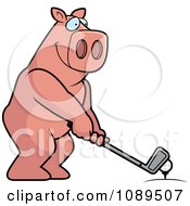 Clipart Golfing Pig Holding The Club Against The Ball On The Tee Royalty Free Vector Illustration by Cory Thoman