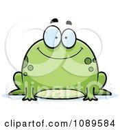 Chubby Happy Frog
