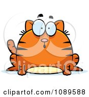 Clipart Chubby Surprised Orange Tabby Cat Royalty Free Vector Illustration