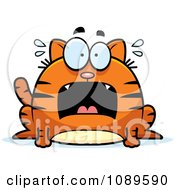 Clipart Chubby Scared Orange Tabby Cat Royalty Free Vector Illustration