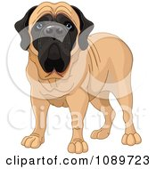 Clipart Cute English Mastiff Dog Standing Royalty Free Vector Illustration by Pushkin