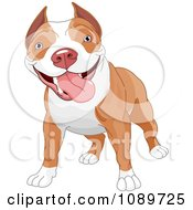 Clipart Cute Pit Bull Dog Standing Royalty Free Vector Illustration by Pushkin