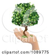 Clipart Human Hand Holding A Lush Green Tree Royalty Free Vector Illustration by AtStockIllustration
