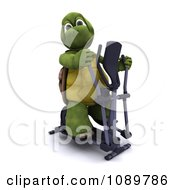 3d Tortoise Exercising On A Crosstrainer