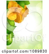 Clipart 3d Yellow Hibiscus Flower And Leaves Border Over Green With Flares Royalty Free Vector Illustration