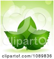 Clipart 3d Green Plant Leaves Over Flares With Copyspace Royalty Free Vector Illustration by elaineitalia