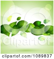 Clipart 3d Floating Green Plant Leaves Over Flares With Copyspace Royalty Free Vector Illustration