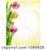 Clipart 3d Tulip Flower Border Over Yellow With Flares Royalty Free Vector Illustration by elaineitalia
