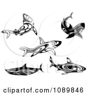 Clipart Black And White Tribal Sharks Royalty Free Vector Illustration