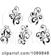 Black And White Flourish Motif Design Elements 3