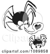 Clipart Dangerous Black Spider Trying To Seduce A Mate Royalty Free Vector Illustration by Zooco