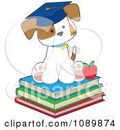 Student Puppy Sitting On Books And Wearing A Graduation Cap