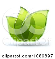 3d Transparent Glass Green Leaves 2