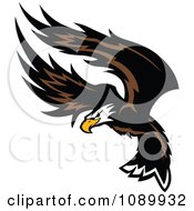 Clipart American Bald Eagle Flapping Its Wings Royalty Free Vector Illustration by Chromaco