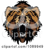 Clipart Snarling Bear Face Royalty Free Vector Illustration by Chromaco #COLLC1089949-0173