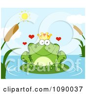 Loving Frog Prince Perched On A Pond Lily Pad