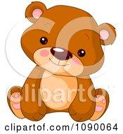 Cute Bear Cub Sitting Upright