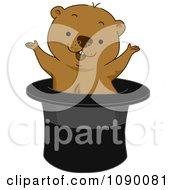Clipart Groundhog Popping Out Of A Top Hat Royalty Free Vector Illustration