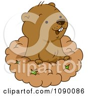 Clipart Happy Groundhog Peeking Out Of His Hole Royalty Free Vector Illustration by BNP Design Studio