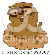 Clipart Happy Groundhog Wearing Glasses And Standing In His Hole Royalty Free Vector Illustration