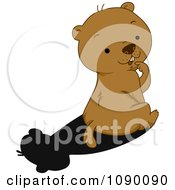 Clipart Cute Groundhog Sitting And Looking Back At His Shadow Royalty Free Vector Illustration by BNP Design Studio