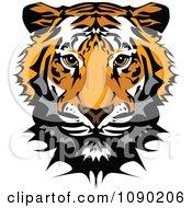 Clipart Cute Tiger Mascot Head Royalty Free Vector Illustration