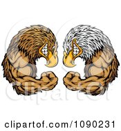 Clipart Bald Eagle And Falcon Mascots Facing Off Royalty Free Vector Illustration