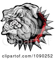 Clipart Gray Bulldog Mascot Head With A Spiked Red Collar Royalty Free Vector Illustration