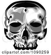 Dark Human Skull