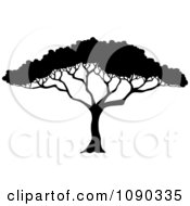 Clipart Silhouetted Acacia Tree With Lush Foliage Royalty Free Vector Illustration