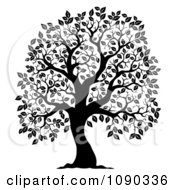 Clipart Black Silhouetted Tree With Leafy Foliage Royalty Free Vector Illustration