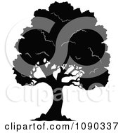 Clipart Black Silhouetted Tree With Lush Foliage Royalty Free Vector Illustration
