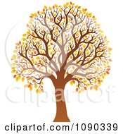 Clipart Tree With Orange Autumn Foliage Royalty Free Vector Illustration