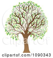 Clipart Tree With Green Spring Leaves Royalty Free Vector Illustration by visekart