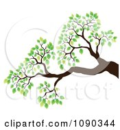 Clipart Tree Branch With Green Spring Leaves Royalty Free Vector Illustration