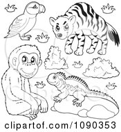 Clipart Outlined Puffin Monkey Lizard And Hyena Zoo Animals Royalty Free Vector Illustration by visekart