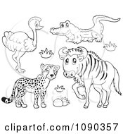 Clipart Outlined Cheetah Ostrich Crocodile And Wildebeest Savannah Wildlife Royalty Free Vector Illustration