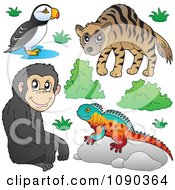 Clipart Puffin Bird Monkey Lizard And Hyena Zoo Animals Royalty Free Vector Illustration