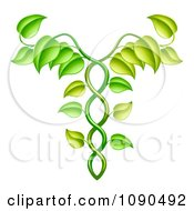 Clipart Green Vine Forming An Alternative Medicine Caduceus Royalty Free Vector Illustration by AtStockIllustration