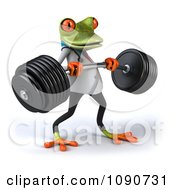 3d Fit Doctor Springer Frog Lifting Barbell Weights 2