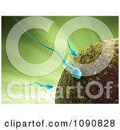 Clipart 3d Blue Sperm Cells Attacking An Egg Over Green Royalty Free CGI Illustration by Mopic