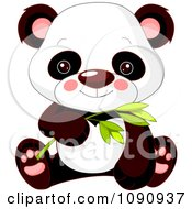 Clipart Cute Baby Zoo Panda And Holding Bamboo Royalty Free Vector Illustration